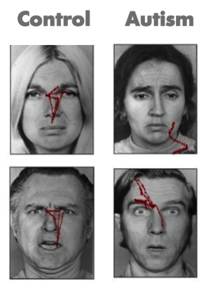Visual scanning of faces in autism. Journal of autism and developmental disorders