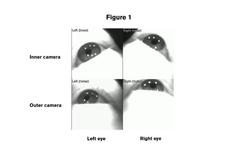 Pro Glasses 2 eye images figure 1