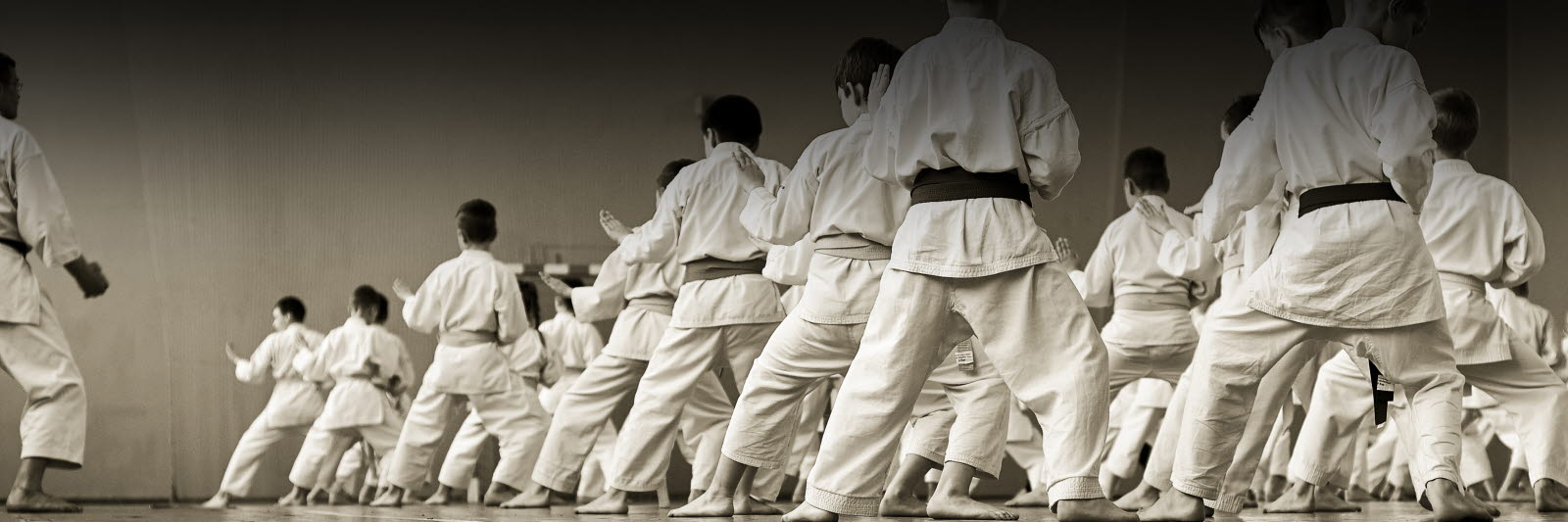 training karate athletes